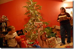 December 2009 395