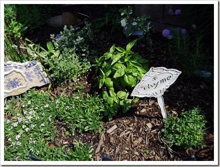 herb garden june09 005