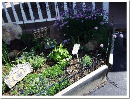 herb garden june09 012