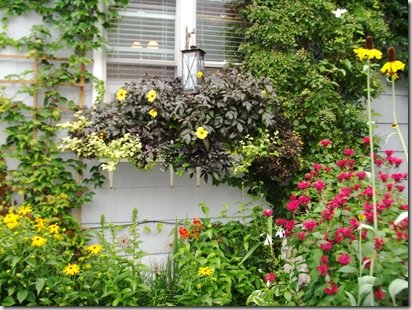 garden walk 046 - Copy