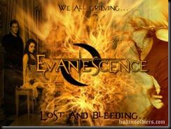 EvanescenceEvanescenceSSLinkinSoldiers [Original Resolution]