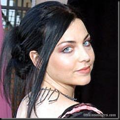 Evanescenceamy_lee_18LinkinSoldiers [Original Resolution]