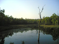 Kanha Lake.jpg
