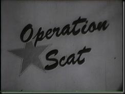 OpScat Title-2