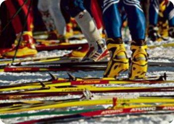 фото Соревнования по лыжным гонкам в Чуприяновке