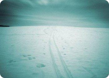 фото Сотрудники КАЭС вышли на лыжню