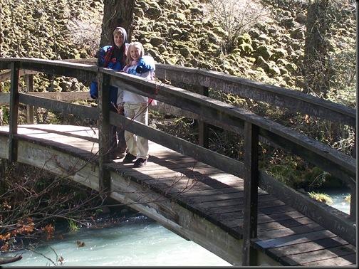 Burney Falls, )oct 2010 005