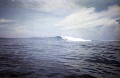 tim-bawa2008