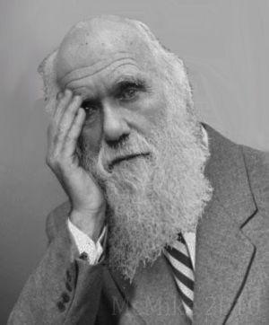 [Image: DarwinFacepalm.jpg]