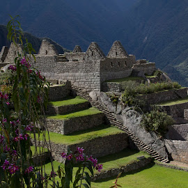 Another View of Machu Picchu by Janet Marsh - Buildings & Architecture Public & Historical ( peru, machu picchu,  )