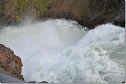 Yellowstone 2009 239