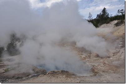 Yellowstone 2009 007