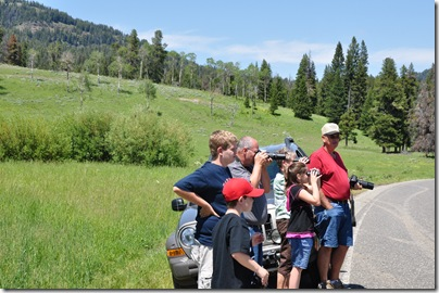 Yellowstone 2009 075