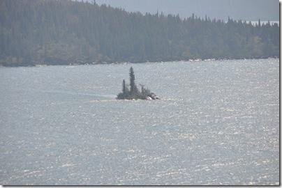 Glacier National Park 2009 095