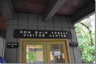 Hoh Rain Forest 028
