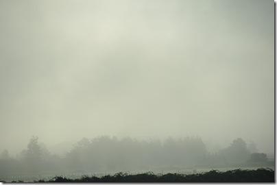 Kelso, WA 013