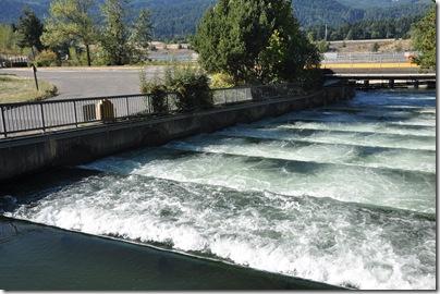 Oregon Water Falls 215
