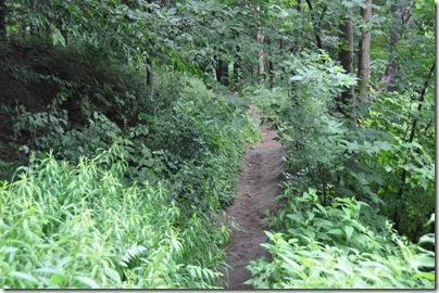 Vermont 2010 053
