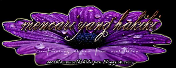header blog anyys
