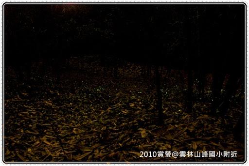 山峰國小 螢火蟲