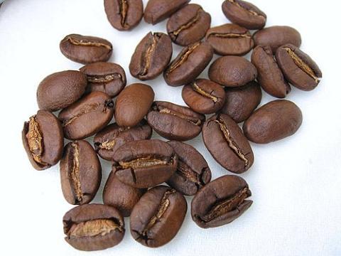 討論 – 失落的古坑咖啡?