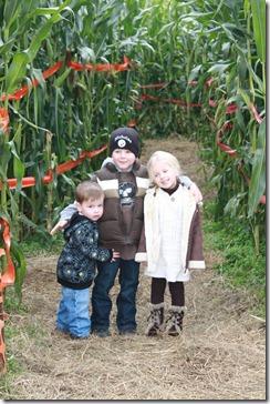 corn maze3