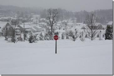 HUGE Snow February 2010 031