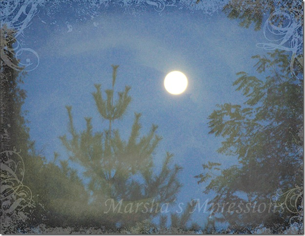 full moon card- w watermark copy