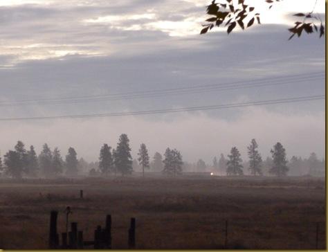 foggy 012