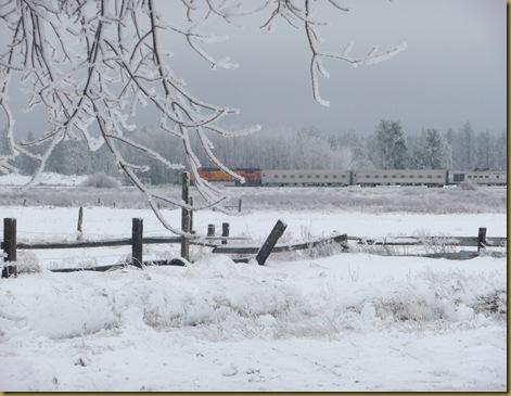 2010 snow 004
