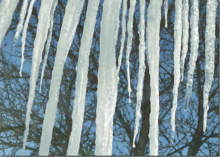 ice 008