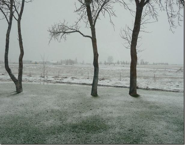 april snow 001