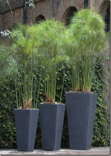 garden-containers-pots-and-planters
