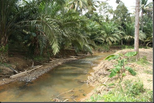 sungai2