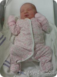 baby Ward