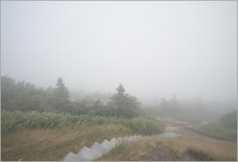Foggy Cadillac Mt