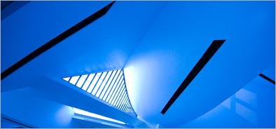 Soaring In Blue-IMG_5185-Edit
