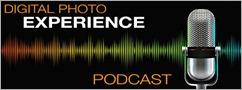 DP Experience logo