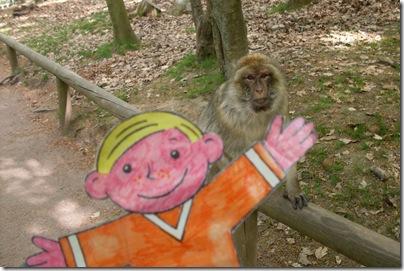 Stanley al parco delle scimmie di Kintzheim