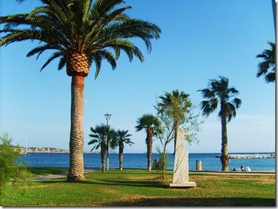 Palme vicino al mare a Bandol