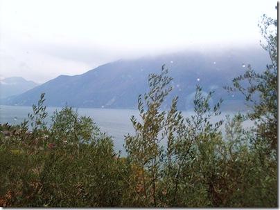 Il Garda dietro gli olivi di Villa Margherita a Limone