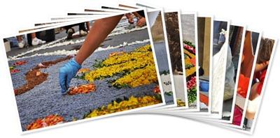 Visualizza Preparando l'Infiorata di Pitigliano 2010