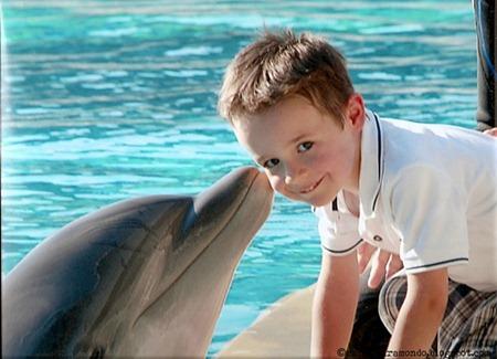 Il delfino bacia AjScannedImage