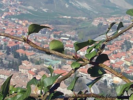 Aprile 2008. San MarinoS.Marino 2008 093
