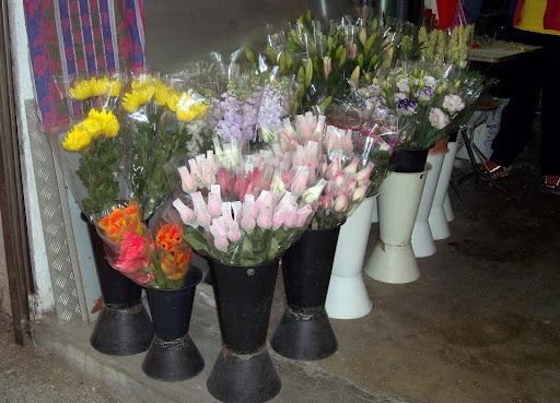 Hong Kong Island 16/12 Flowers