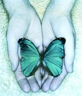 abra suas asas