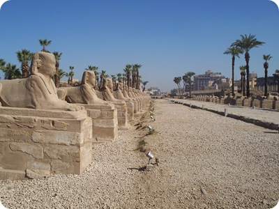 12-19-2009 009 Avenue of the sphinxes