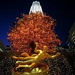 Christmas in Rockefeller Center, New York.jpg