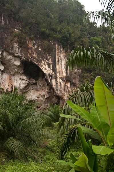 Khao Phanom Bencha National Park и таинственный пещерный храм.