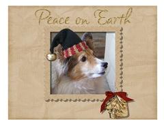 Christmas-Card-2008-002-6.5-x-5---3